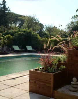 Jardin sec à la provençale